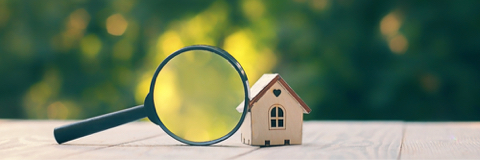 What is a Property Survey?